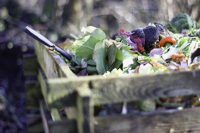 Kompostowanie odpadów i opakowań eko
